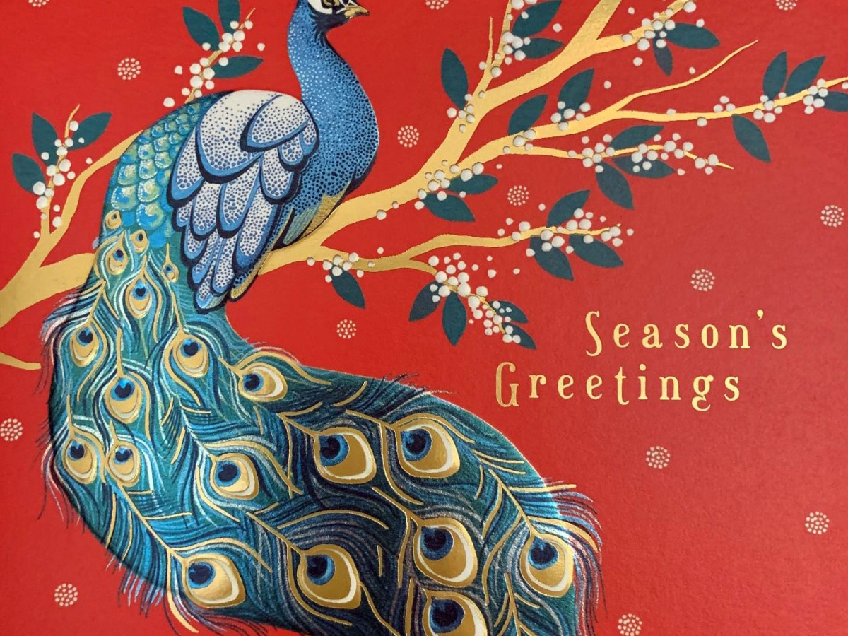 Season's Greetings peacock card from TheArtFile