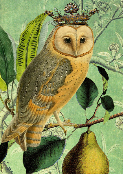 Madame Treacle crowned owl card